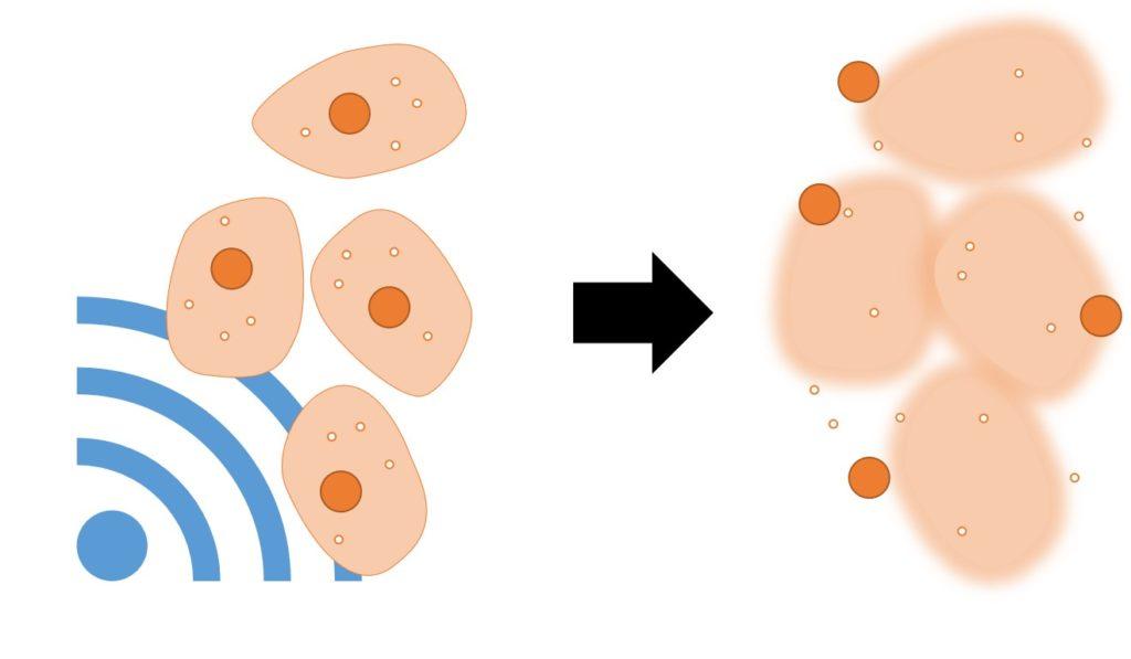 超音波による細胞の破砕