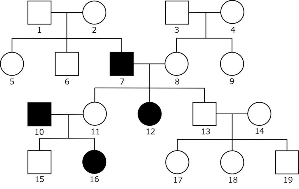 伴性遺伝の問題(家系図)